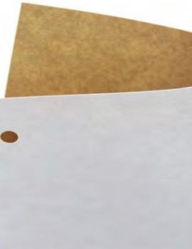 瑞典皇冠白面牛卡纸